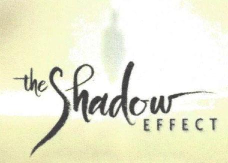 Shadow Effect Training